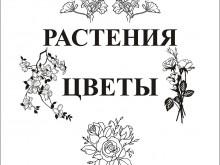 peskostrui_cvety_i_rasteniya