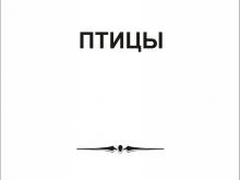 peskostrui_pticy