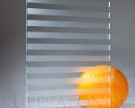 steklo_bc_9_zebra