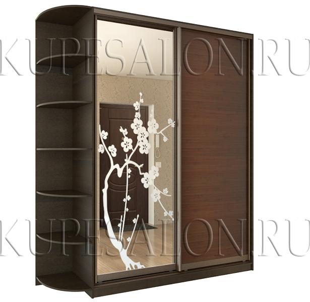 небольшой тёмный шкаф купе с бамбуком и зеркалом