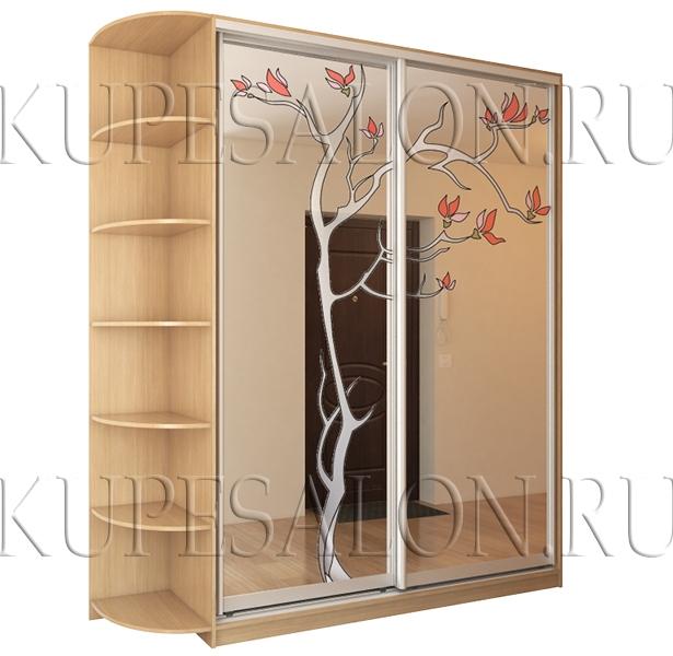 Шкаф купе «Осенняя сакура» (арт Витр-16)